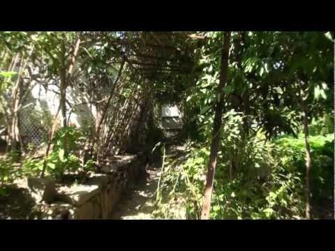 La Maison Kabyle Bourdieu Pdf Download