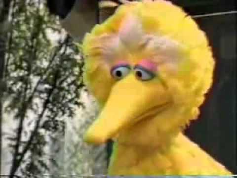 Sesame Street Episode 3325