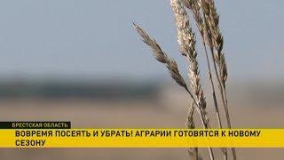 Сытые коровы и тонны кукурузы: в чём секрет успеха сельхозпредприятия «Вознесенское»?