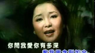 鄧麗君 月亮代表我的心KTV