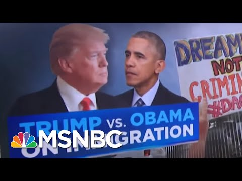 Comparing President Donald Trump's Immigration Policy To Barack Obama's | Velshi & Ruhle | MSNBC