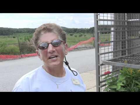 Mostardi Nursery Greenhouse Plant Quality