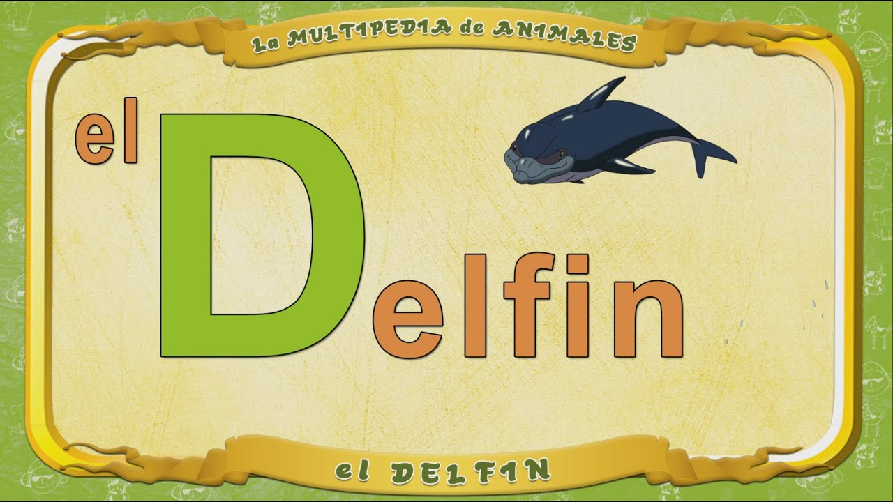 multipedia de los animales letra d el delfin youtube