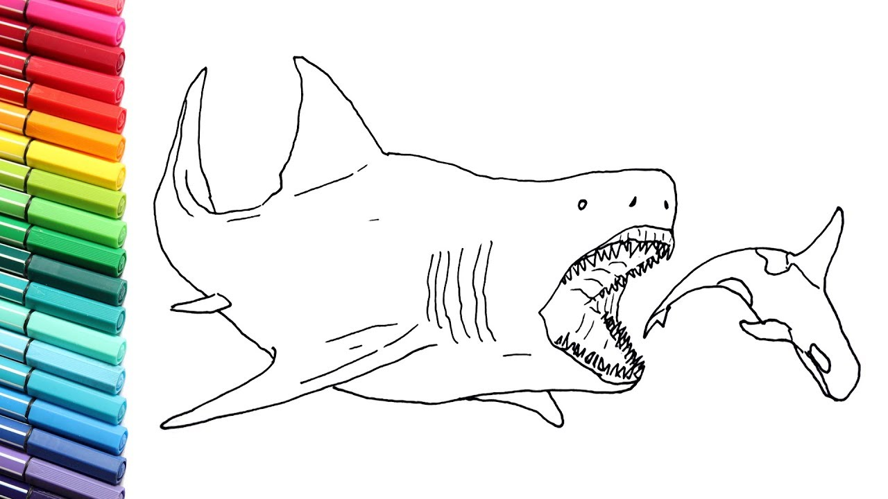 Drawing And Coloring The Megalodon Megalodon Shark Color Pages For