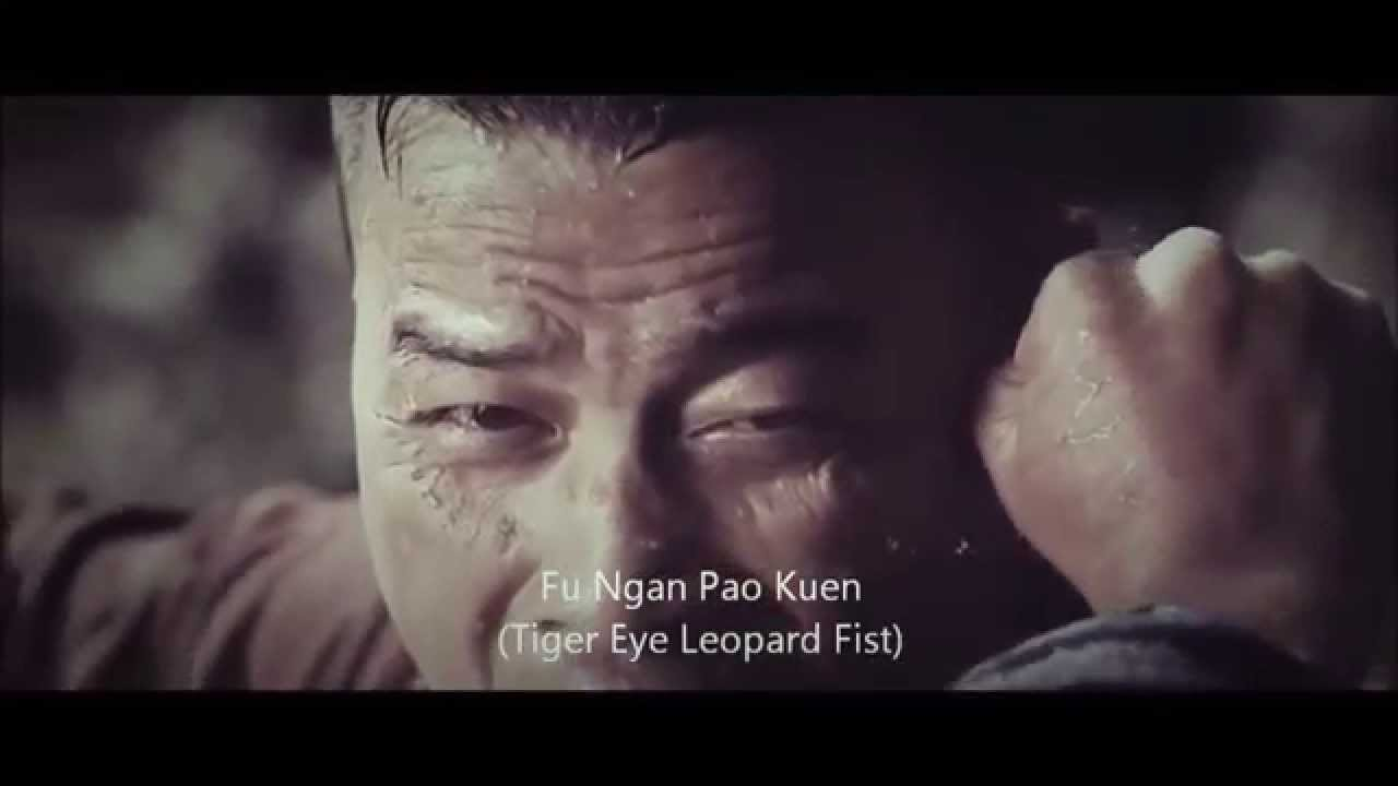 Download Donnie Yen using Hung Gar Kung Fu his movie Dragon : Wu Xia (武俠).