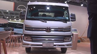 Volkswagen Delivery Express Tipper Truck (2019) Exterior and Interior