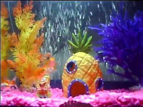 spongebob fish tank pineapple castle youtube