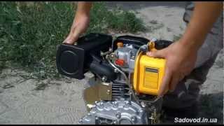 Двигун дизельний Sadko DE-220 (4,2 л. с.) огляд