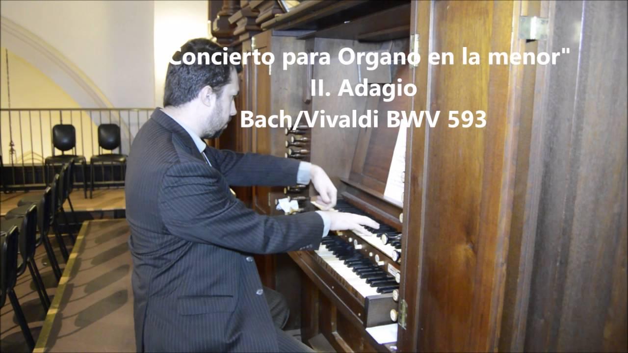 Download Cristobal Johnson   Concierto para Organo en la menor   I Allegro II Adagio III Allegro – Bach Vival