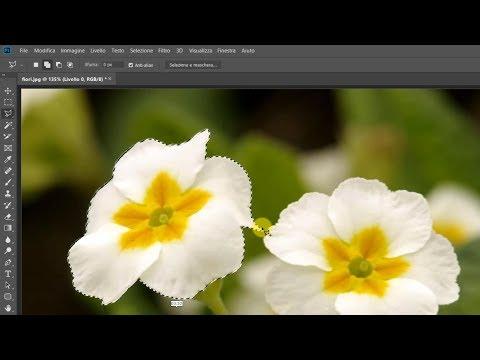 Come Scontornare Un Oggetto Da Una Foto Con Photoshop