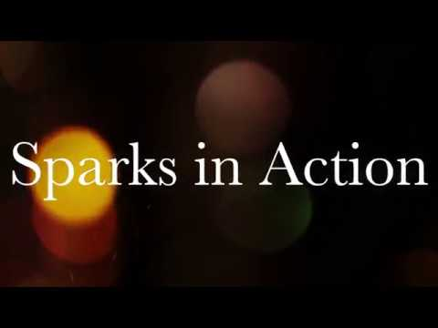 Sparks in Action -Women Who Walk the Talk