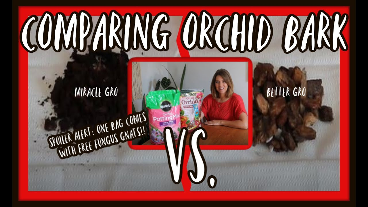 Comparing Orchid Bark Mix Better Gro Vs Miracle Grow Part 2 Of