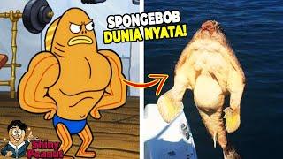 Download lagu Aslinya Beneran Kekar?! Inilah Karakter Film SpongeBob di Dunia Nyata