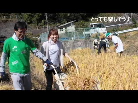 ネオナチュラル母袋有機農場 稲刈り収穫祭&体験会開催