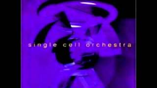 Single Cell Orchestra - Transmit Liberation