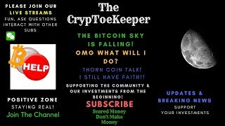 THE BITCOIN SKY IS FALLING WHAT DO WE DO? LETS TALK THORN COIN! YOU NEED TO HAVE PATIENCE!
