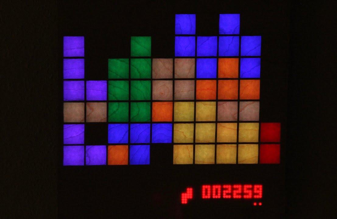Tetris Led Matrix Raspberry Pi Ws2812 Youtube