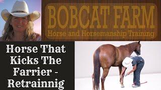 Rehabilitating a horse that kicks the farrier thumbnail