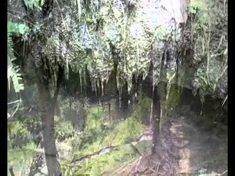 น้ำตกเล็กๆ ข้างบ้านพักอุทยานแห่งชาติเอราวัณ กาญจนบุรี ; Small waterfall