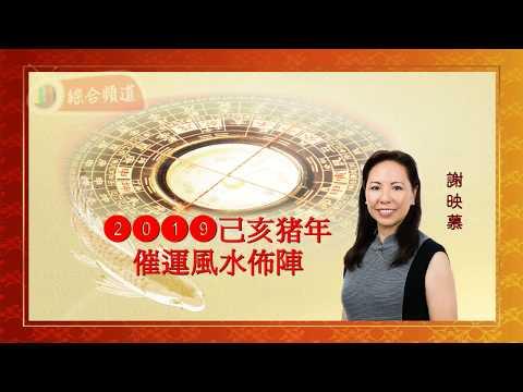 謝映慕 2019 己亥豬年風水佈局 (國語版)