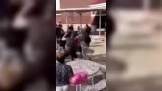 Student fight on Seabreeze High campus
