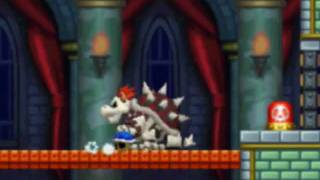 Did you know that the Blue Shell works against Dry Bowser?  (New Super Mario Bros. DS)