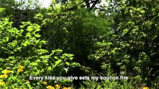 My One And Only Love - MFSB with Lyrics