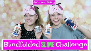 Blindfolded Slime Challenge ~ Jacy and Kacy