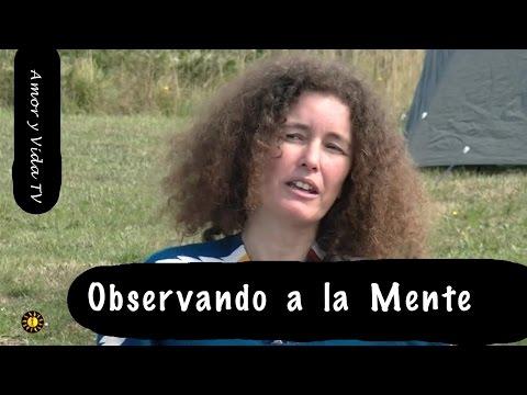 Observando a la Mente - Amor y Vida TV 36