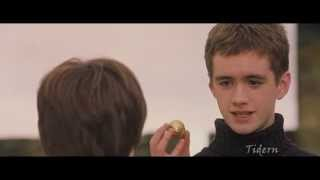 Гарри Поттер и какой то камень  НедоRYTP
