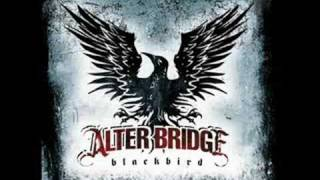 Watch Alter Bridge The Damage Done video