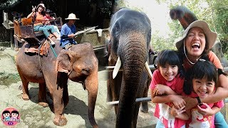 หนูยิ้มหนูแย้ม   ขี่ช้างดูช้างอาบน้ำ เที่ยวเชียงใหม่ ปางช้างแม่สา