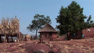 الجفاف يضرب زيمبابوي وافريقيا الجنوبية