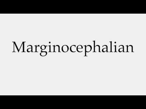How to Pronounce Marginocephalian