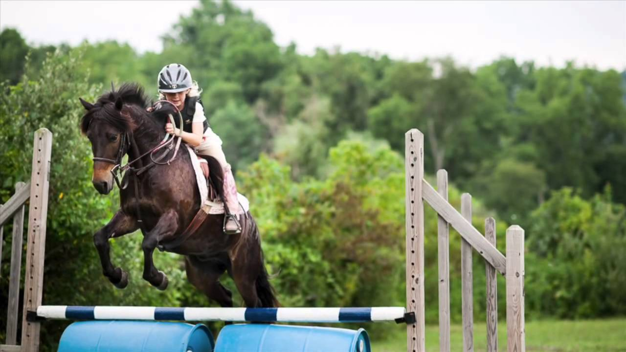 Horse Camp at Camp Sankanac 2014 - YouTube
