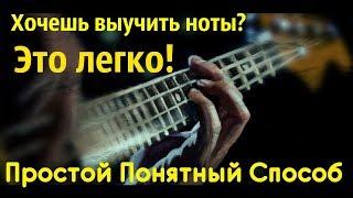 Простой Понятный Способ выучить ноты на Бас гитаре (КМБ #6)