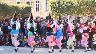 Awa-Odori Paris 2015 | 阿波踊り パリ