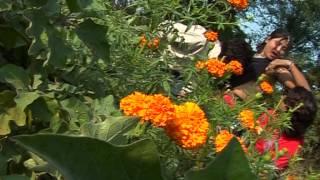 Chhori Boli Saadi Chhe | Rajasthani Sexy Video Songs | Shakuntala Rao