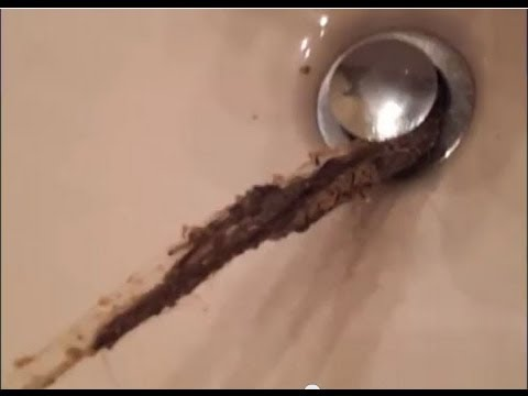 Delightful Girls Are More Gross Than Boys   Hair Clogged Drain   YouTube