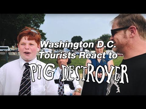 Washington D.C. Tourists React to PIG DESTROYER