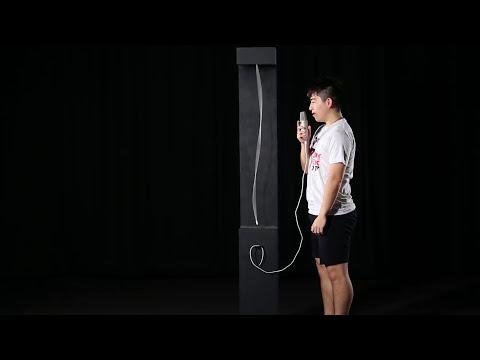 LARYNX: an interactive installation that visualizes sound
