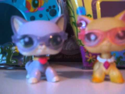 Lps Cats And Dogs