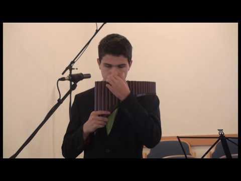 Michael Stebner - Gib offene Augen - Panflöte