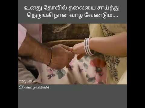Unathu tholil thalaiyai saithu love feel whatsapp status || salim || vijay Antony