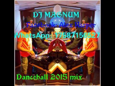 Dj Magnum-Dancehall 2015 mix