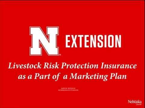 Livestock Risk Protection Insurance
