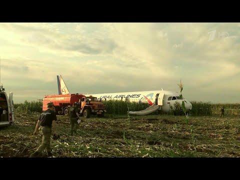 233 человека спасены благодаря слаженным действиям экипажа А321.