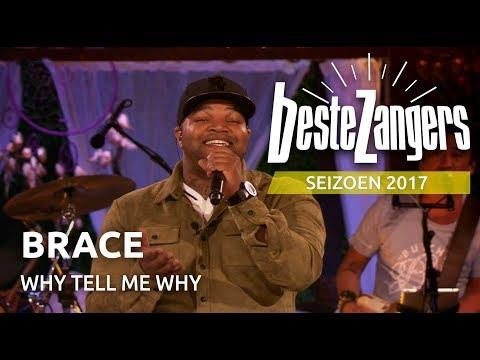 Brace - Why tell me why | Beste Zangers
