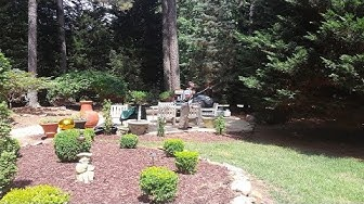 Mosquito Treatment Cary NC