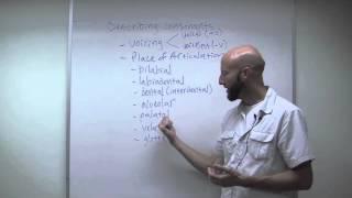 Phonetics (pt. 1)